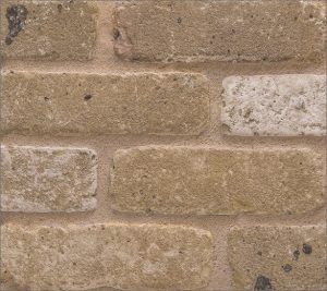 Islington Yellow Rustica Brick Slips